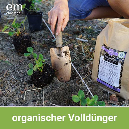 Organischer Volldünger Schwarzes Gold, fermentierter Hühnermist mit Pflanzenkohle