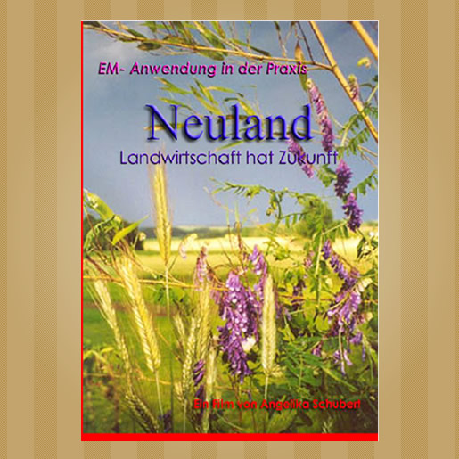 DVD-Neuland
