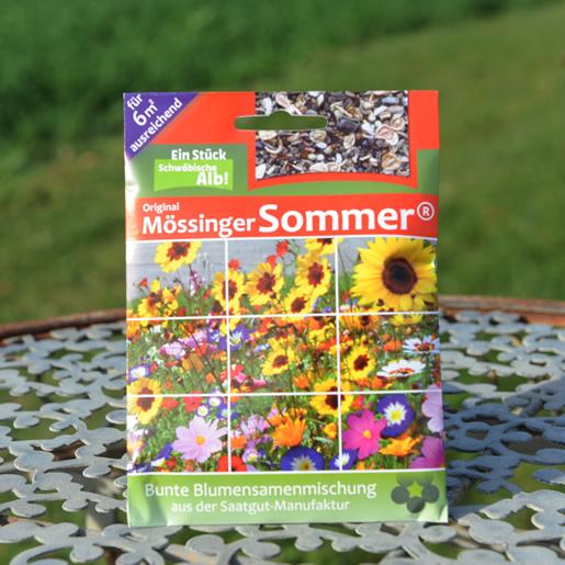 Mössinger-Sommer_6m2