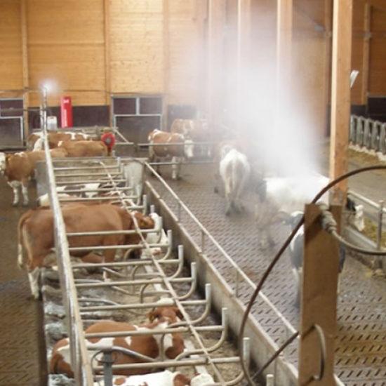 EM- Effektive Mikroorganismen in der Landwirtschaft