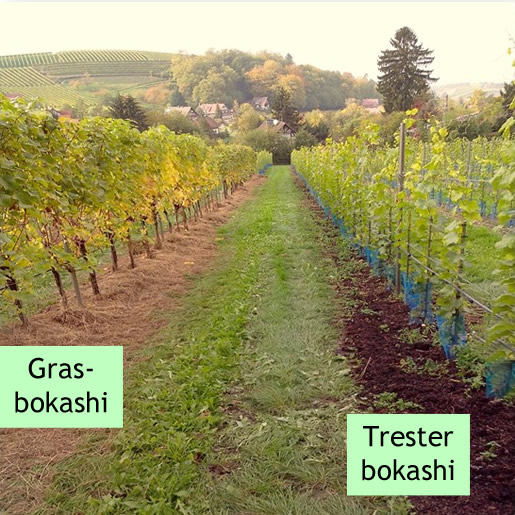 Bokashi-ausgbracht