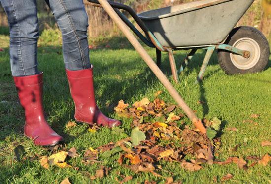 Herbst-Laub-rechen