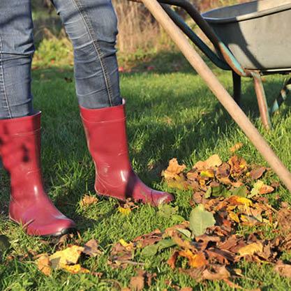 Herbst-Laub-verwerten-Was-tun-Garten-Bokashi