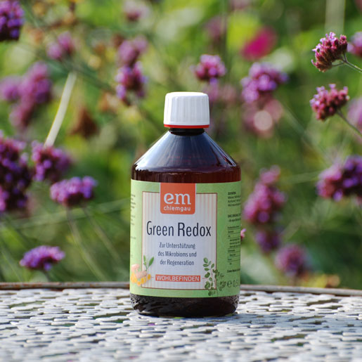 Green-Redox-veganes-Fermentgetraenk-Probiotik