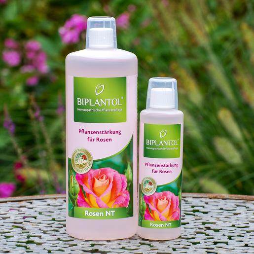 Biplantol Pflanzenstärkung für Rosen EM-Chiemgau