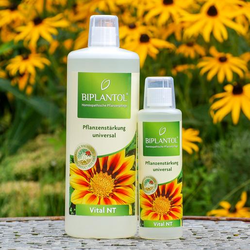 Biplantol Vital-NT Pflanzenstärkung universal bei EM-Chiemgau