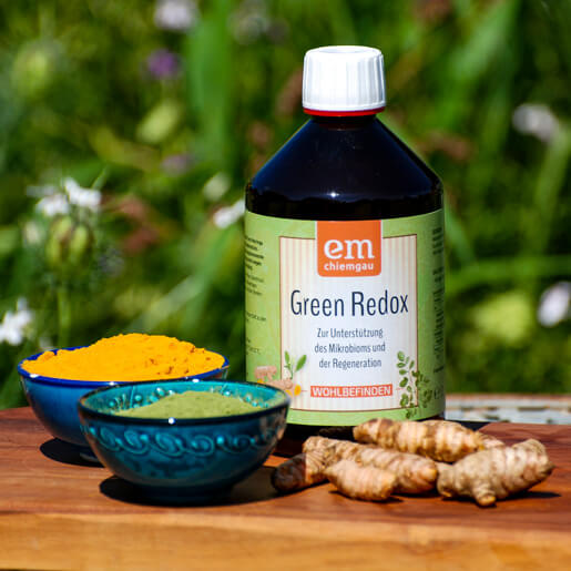 Green-Redox - veganes Fermentgetränk mit Kurkuma und Moringa