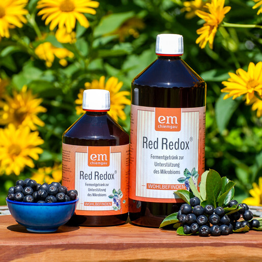 Red Redox - Bio Fermentgetränk mit Aroniabeere