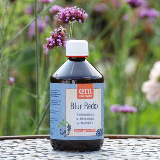 Probiotisch und vegan: Blue-Redox-Fermentgetraenk-EM-Chiemgau