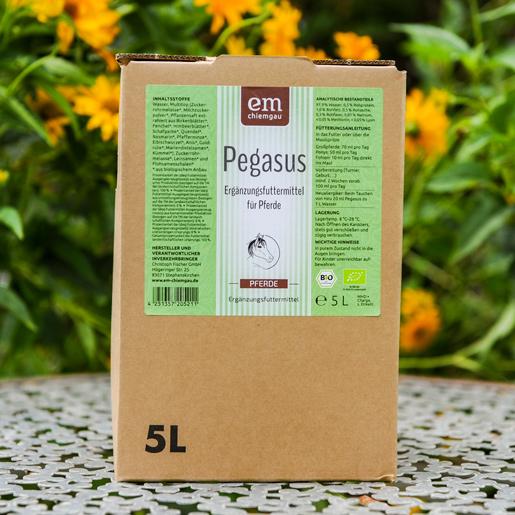 Pegagsus Futterferment in 5 L Bad in Box in Bio-Qualität